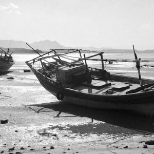 Dhows, Sur, Oman low.jpg