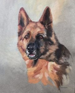 Commission a Pet Portrait