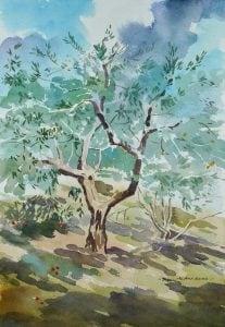 COVID 19 Olive Tree